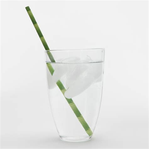 Bamboo Paper - kikkerland birch and bamboo paper straws the green
