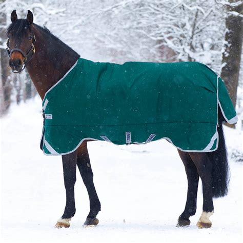 rambo lightweight turnout rug rambo original lite 0g turnout rug with leg arches green silver redpost equestrian