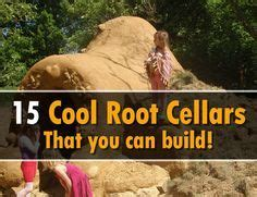 match in the root cellar how you can spark a peak performance culture books 1000 ideas about root cellar plans on root