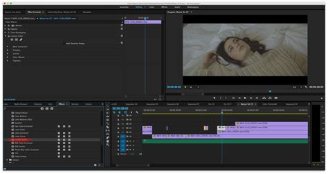 adobe premiere pro lumetri lutify me how do i apply 3d luts in adobe premiere pro