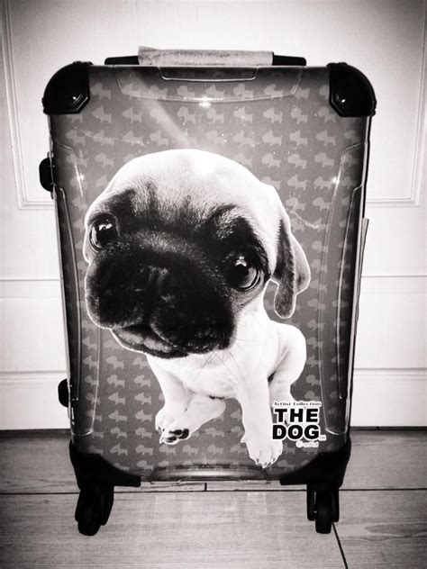 pug suitcase 123 best images about artlist collection products on plush cork coasters