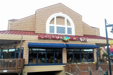 north myrtle beach restaurants top north myrtle beach seafood restaurants grand strand