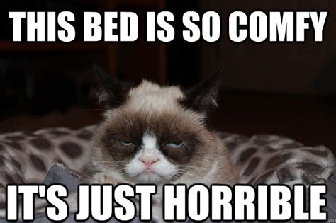 Bed Memes - this bed is so comfy it s just horrible beds are