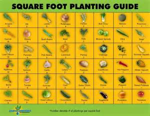 Square Foot Vegetable Garden Layout Best 25 Square Foot Gardening Ideas On Square Foot Garden Layout I Square Foot And