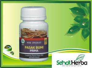 Obat Herbal Pasak Bumi obat herbal kapsul pasak bumi sehatherba