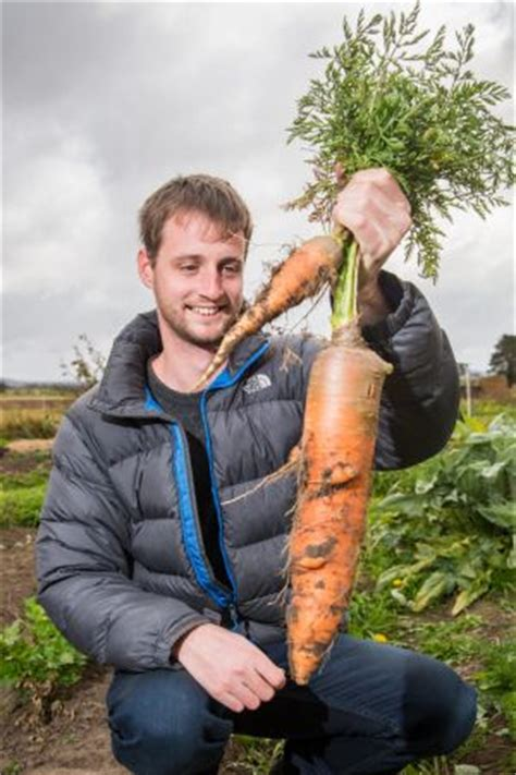 list of synonyms and antonyms of the word: huge carrot