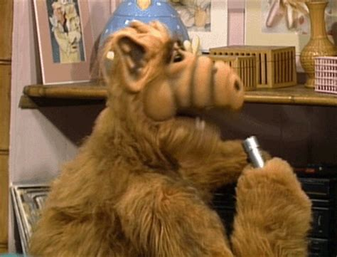 throwback alf gif find & share on giphy