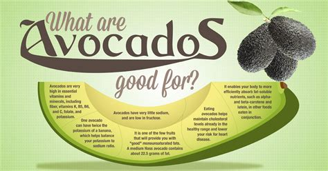 health advantages of micro organism in the giant avocado and its advantages