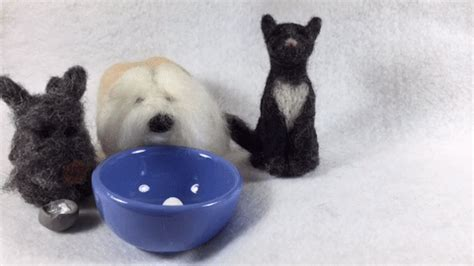 Baking Scottish Terrier GIF by ELFvid   Find & Share on GIPHY