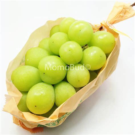 my ate 3 grapes japanese shine muscat grape 600 700g approx momobud