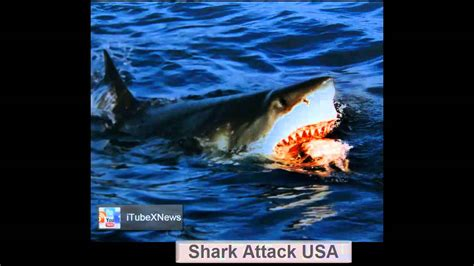 jaws 2 boat attack like a scene out of jaws great white shark attacks boat at
