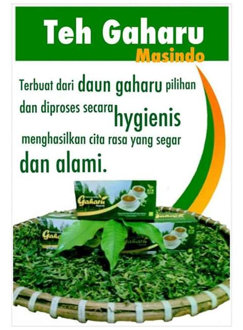 Teh Daun Gaharu teh herbal daun gaharu