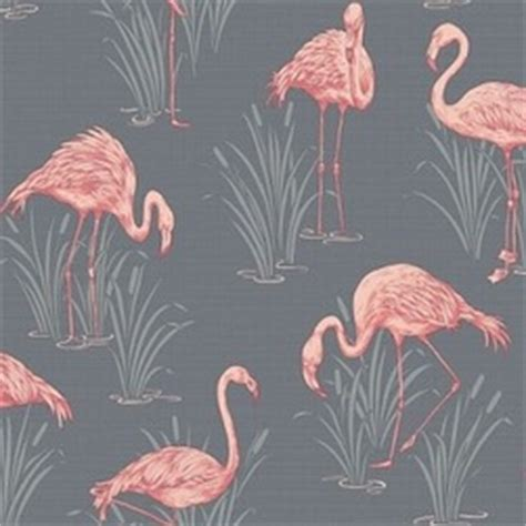 grey wallpaper nz flamingo grey coral wallsorts