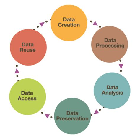 research data lifecycle   research data management