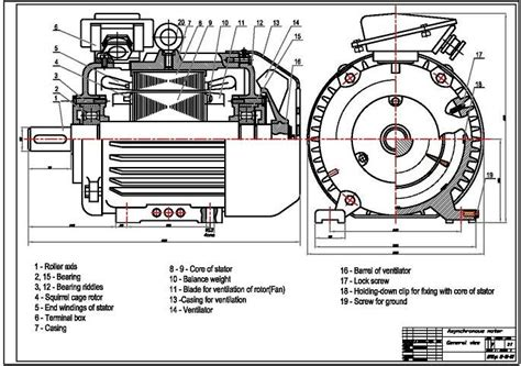 induction motor in wiki induction motor