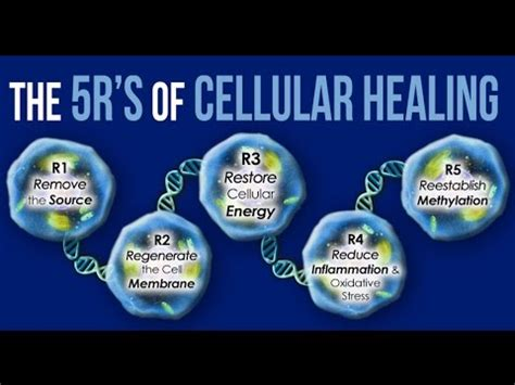 What Is True Cellular Detox by 5rs Of Cellular Healing And Detox With Dr Pompa Chtv
