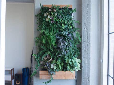 hanging succulents   vertical garden easier
