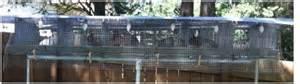 Backyard Quail Farming Lim Yang For Free Quail Cage Design Pdf