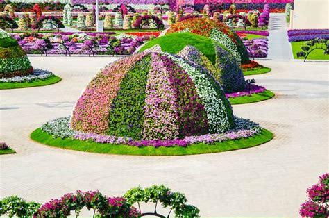 Dubai Miracle Garden World Biggest Flower Garden Dubai Flower Garden