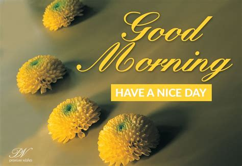 good morning friends stay home stay safe   win