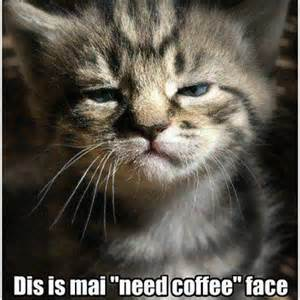 Dis is mai need coffee face