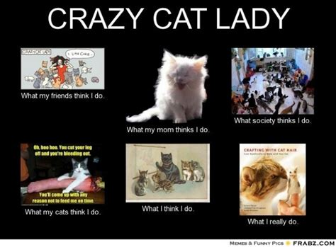 Crazy Lady Meme - crazy cat lady what i really do meme pinterest lady