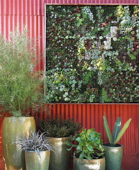 Indoor Vertical Succulent Garden Indoor Vertical Succulent Garden Www Imgkid The