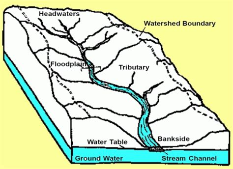 Water Shed Definition by Watershed Graphics All Earth