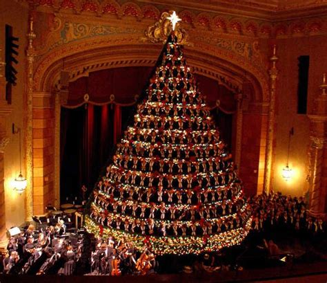 singing christmas tree to return to frauenthal on nov 29