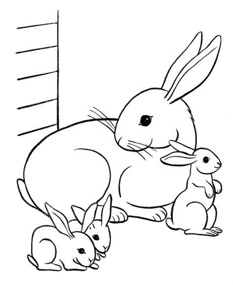 animal coloring pages you can print cute animal coloring pages to print animal coloring pages