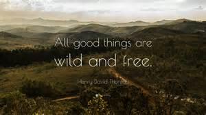 Quote henry david thoreau quote henry david thoreau walden quotes