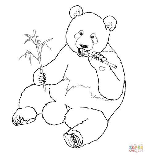 giant panda eats bamboo coloring page free printable