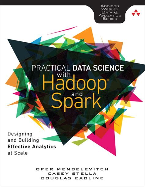 pandas for everyone python data analysis wesley data analytics series books wesley data analytics series