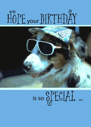 Funny Birthday Dog In Sunglasses. Free Pets eCards