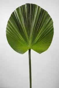 Nautical Themed Outdoor Decor - artificial palm leaf 32in