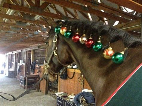 christmas decorating with horses 260 best costumes stuff images on