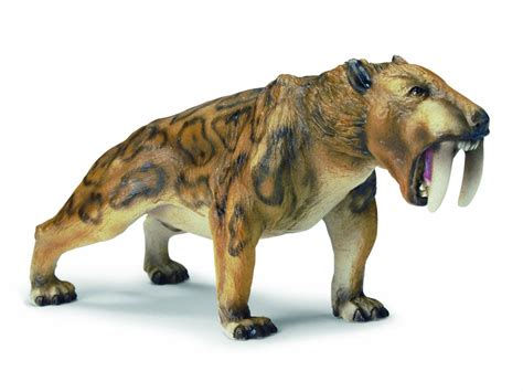 extinct mammals related keywords suggestions extinct mammals long prehistoric mammals related keywords prehistoric mammals
