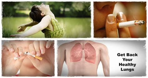 Best Lung Detox Programs by How To Clean Lungs The Complete Lung Detoxification