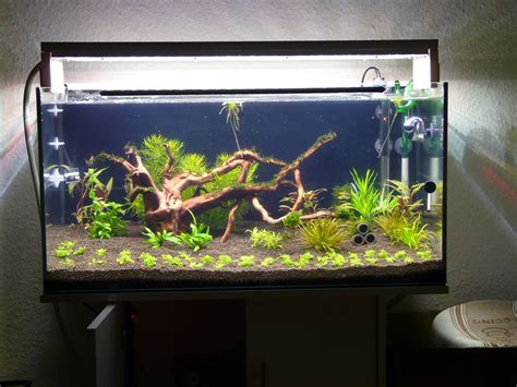 aquarium beleuchtung selber bauen aquarium abdeckung selbst bauen ihr traumhaus ideen