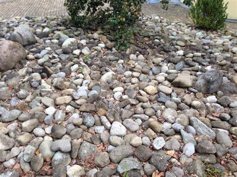 Garten Steine Zu Verschenken steine zu verschenken in hochdorf sonstiges f 252 r den