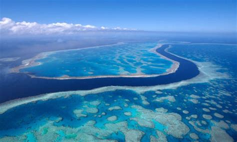 wallpaper removal green bay wi great barrier reef wallpapers wallpaper cave