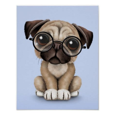 pug in glasses pug puppy wearing reading glasses blue posters