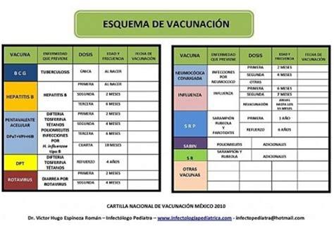 cuadro de vacunas vacunas esquema 2010