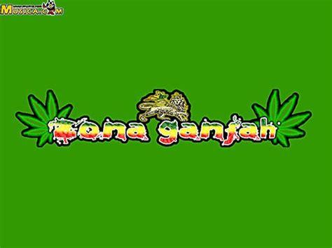 imagenes de leones de zona ganjah zona ganjah letras de zona ganjah musica com