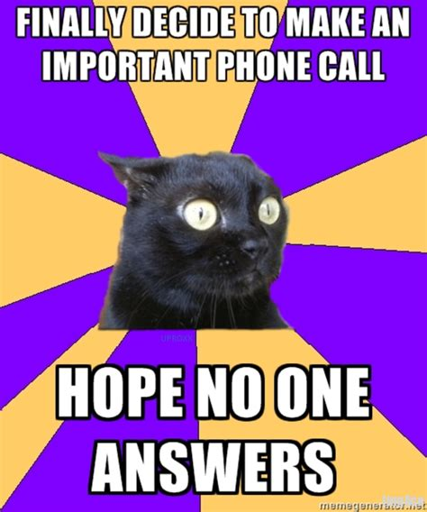 Phone Call Home Meme - image 221914 anxiety cat know your meme