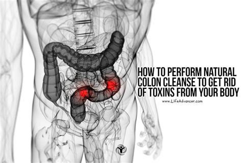 Detox To Rid Of Toxins by How To Perform Colon Cleanse To Get Rid Of Toxins