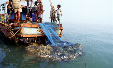 fishing boat rate in india declining indian fisheries perceptions of fisher folk