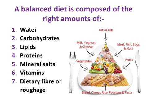 carbohydrates subunit foods that contain carbohydrates proteins and lipids 6 or