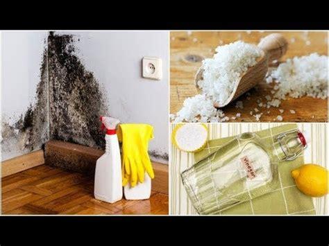 eliminare la muffa dai muri interni come eliminare la muffa dai muri interni doovi