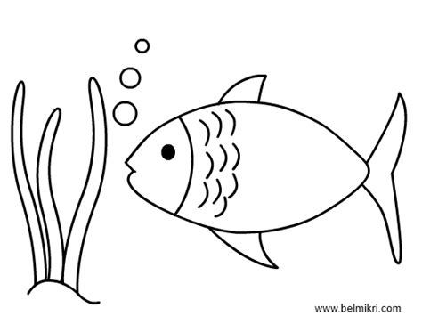 hawaiian fish coloring pages how to draw hawaiian whale